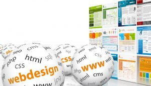 Website design + SEO services